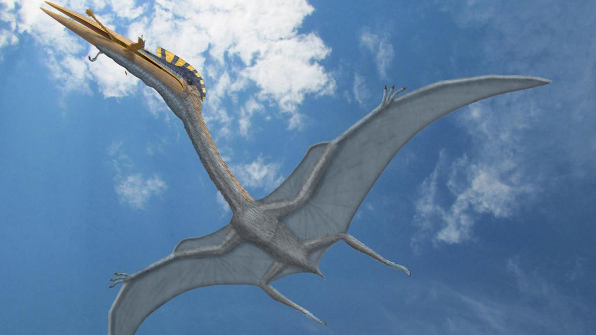 Photo of Dinosaurs in the UK: Britain's first pterodactyl remains found on the Isle of Wight