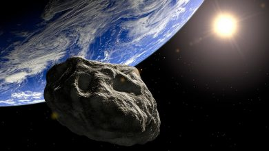Photo of HO HO NO Giant 'Christmas asteroid' longer than two football fields to zip past Earth TOMORROW