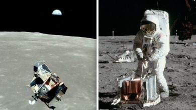 Photo of Moon landing: Apollo 11 legend Michael Collins 'doesn't want' NASA to make lunar return