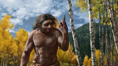 Photo of 'Dragon Man' may rewrite our understanding of human evolution
